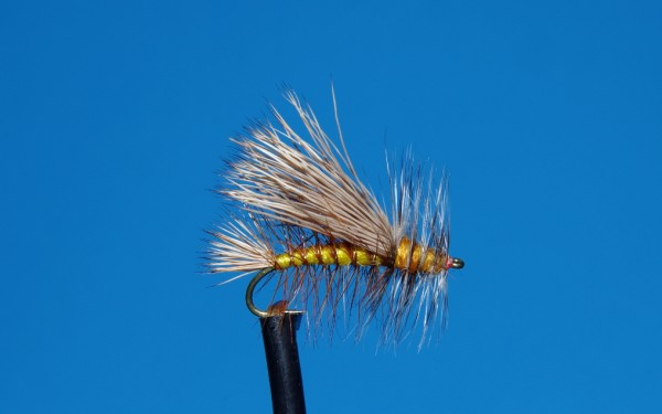 Dry fly fishing for trout with a stimulator dry fly.