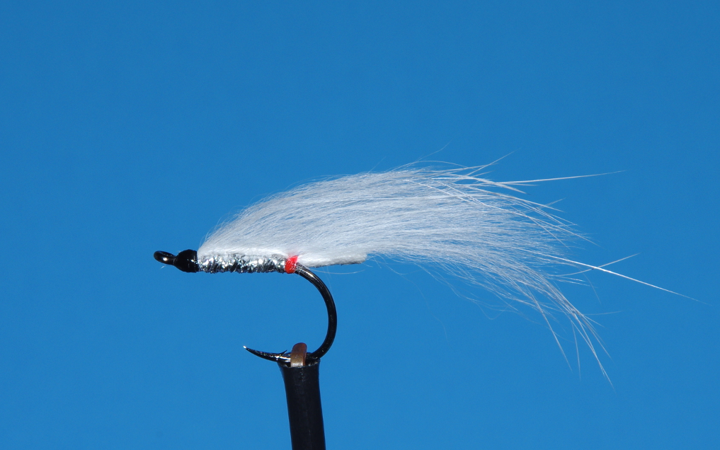 WHITE DEATH STEELHEAD AND BROWN TROUT FLY [VIDEO]