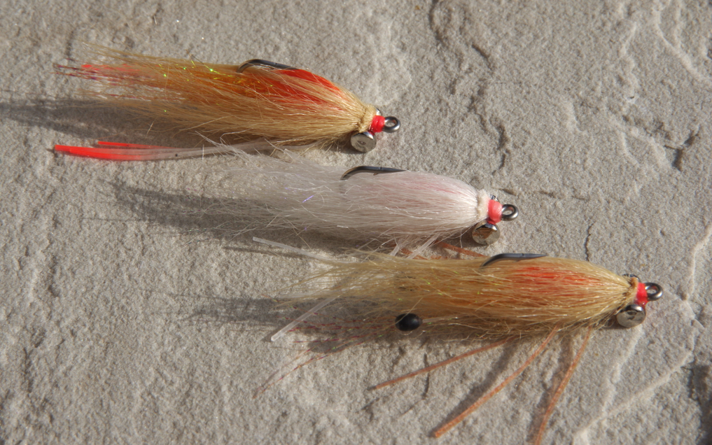 SHRIMP FLY PATTERNS WITH INTERNAL COLOR [VIDEO]