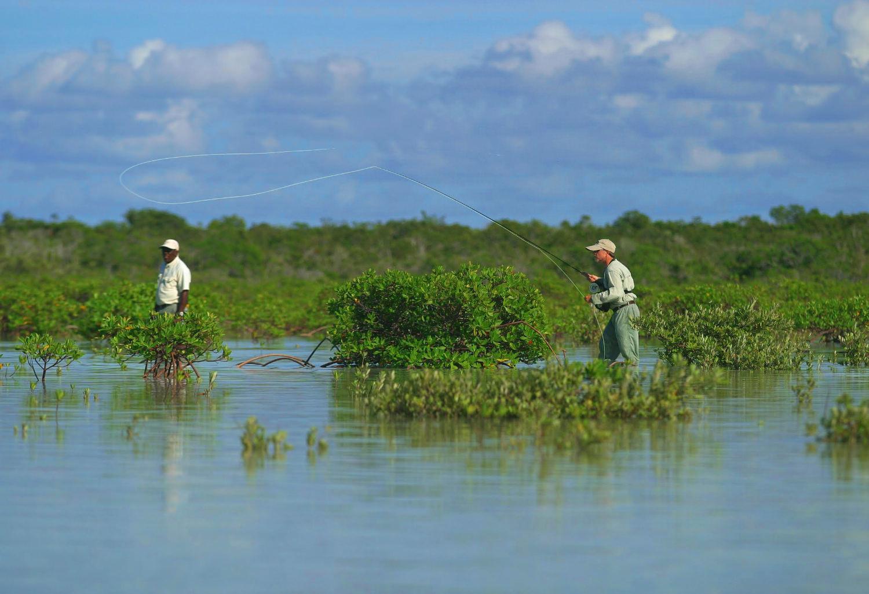 Salt water tides best adult cam for Nj saltwater fishing registry