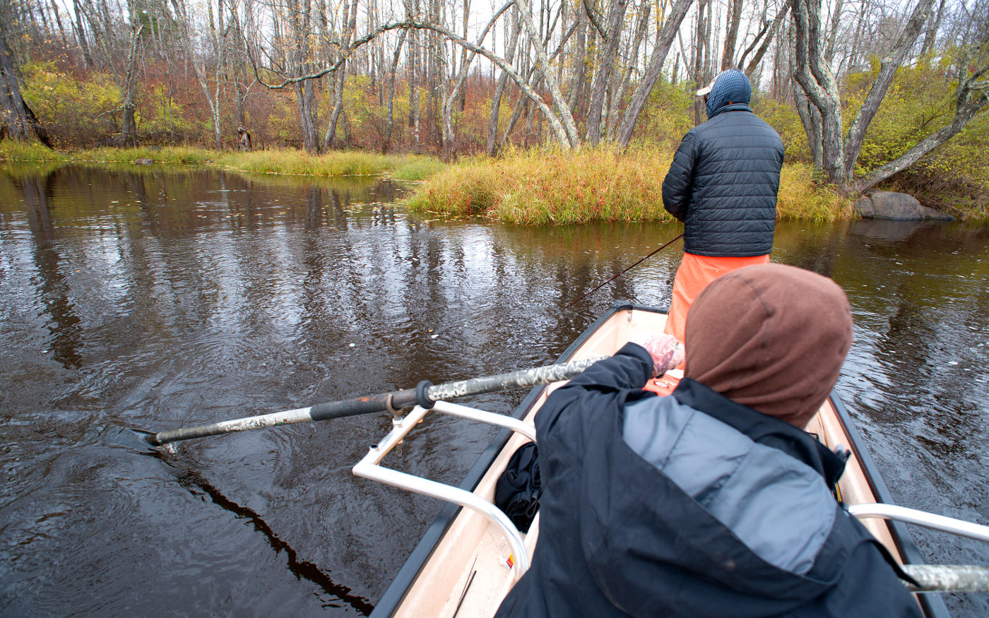 Musky fly fishing the hunt with rick kustich the for Musky fly fishing