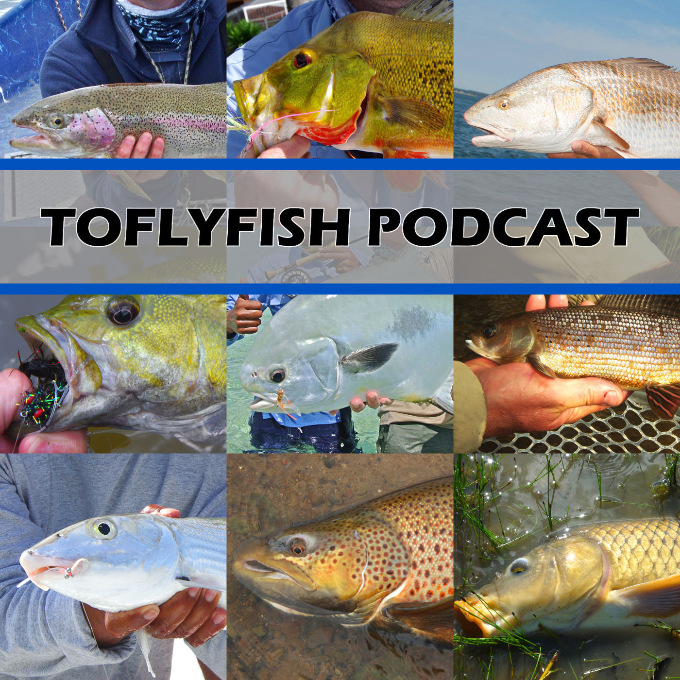 The toflyfish podcast improving the fly fishing for Fly fishing podcast