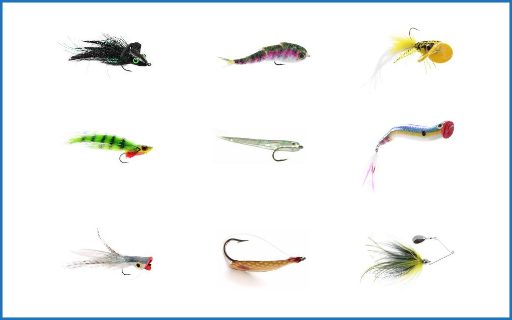 Fly fishing and regular fishing.