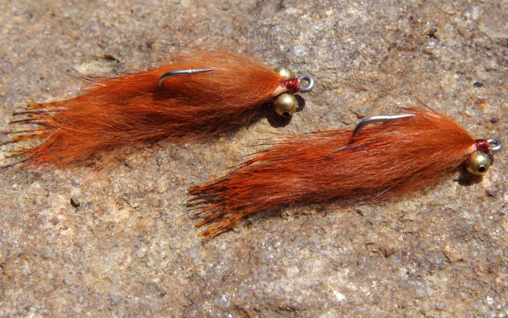 Jackalope carp fly.