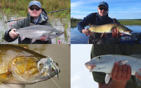 Fly action, smallmouth, bonefish, salmon, northern pike.