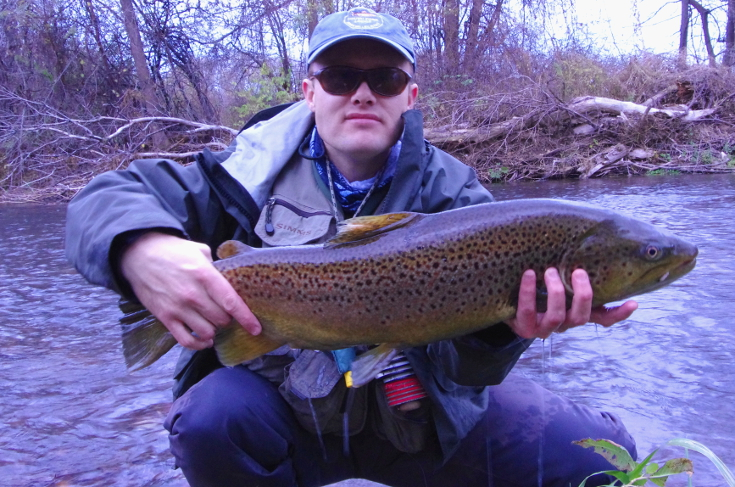 Drop-back lake-run brown trout Great Lakes fly fishing.