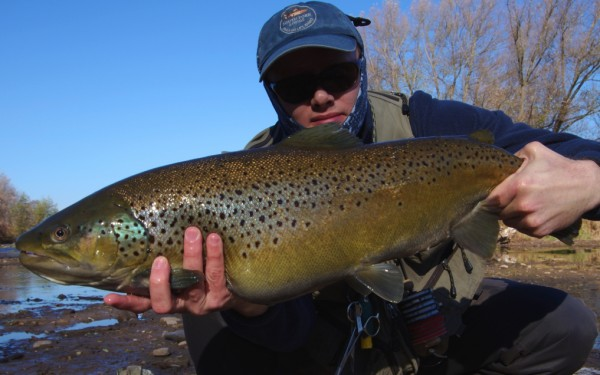 Covering water for steelhead and lake-run brown trout.