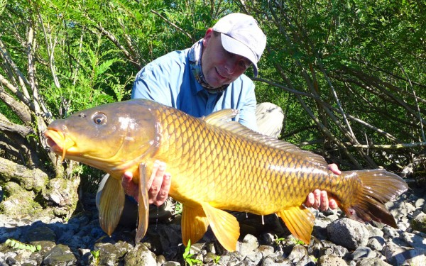 Trophy carp fly fishing.