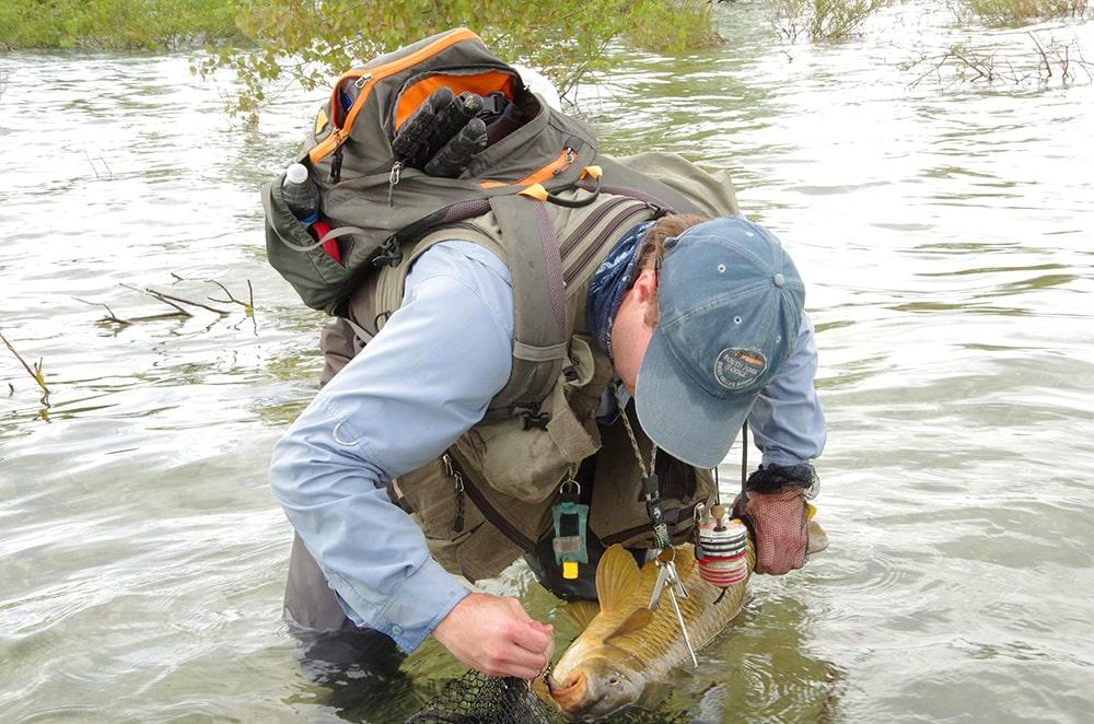 Carp fly fishing gear