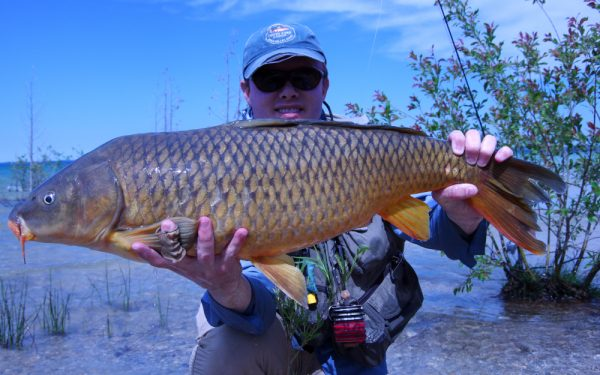 FLY FISHING FOR CARP: COMPLETE GUIDE