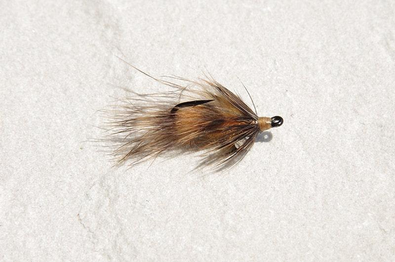 Backstabber carp fly