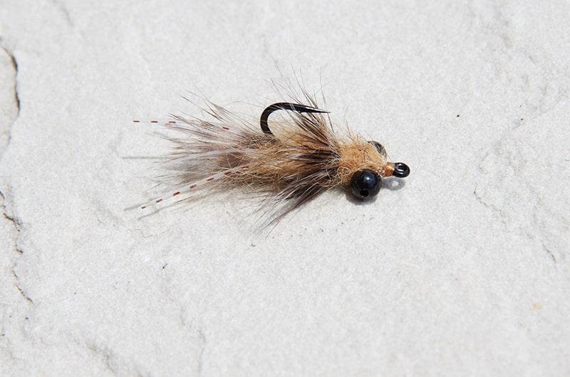 Barry's Carp Bitter carp fly