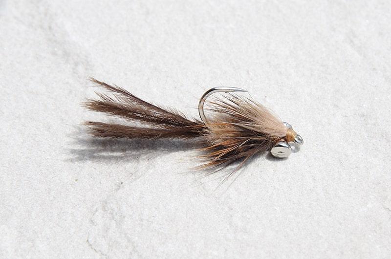 Carp strymph carp fly