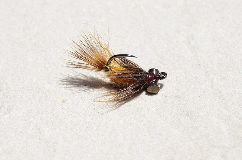 Tangerine carp fly